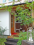 緑豊かな玄関