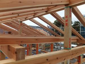 屋根の下地は登り垂木でこの間に天井の杉板を上から落とし込みます。